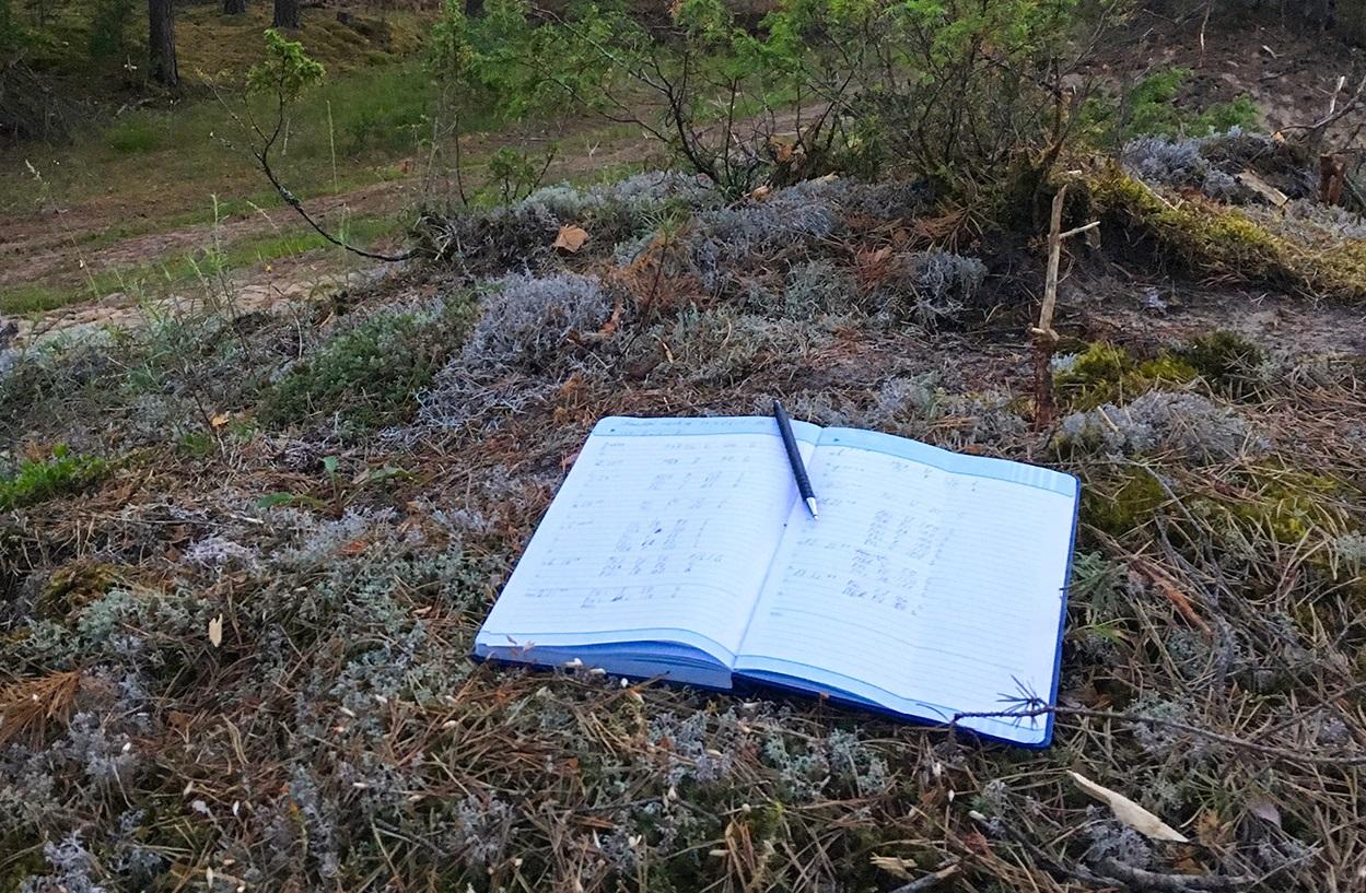 Gamtos stebėjimų duomenų kaupimas