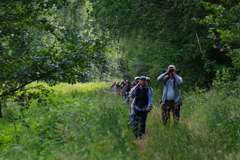 """LRT radijo laidoje """"Vasaros popietė"""" kalbėjome apie ornitologines atostogas ir žiūronus"""